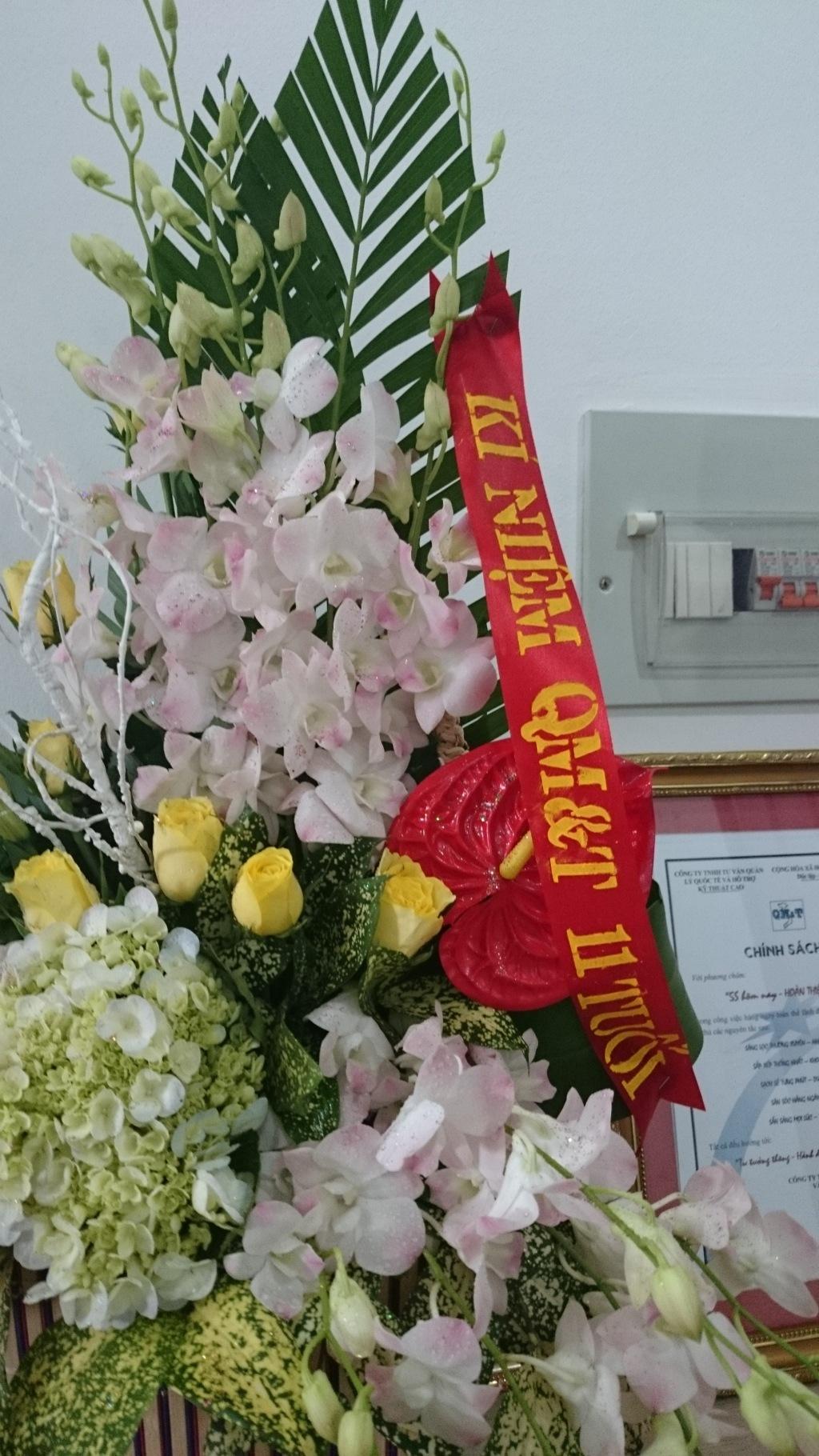 Kỷ niệm 11 năm thành lập QM&T 10/9/2003 - 10/9/2014